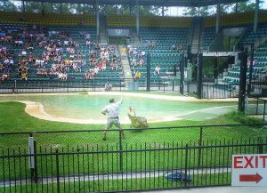 Зоопарк Австралии