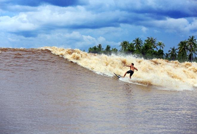 Серфинг на реке Кампара