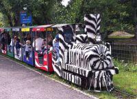 Экскурсионный поезд в Erlebniswelt Seeteufel.Берн