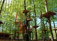Парк приключений Adventure Park Rheinfall в Цюрихе