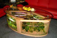 Akwarium stołowe 1