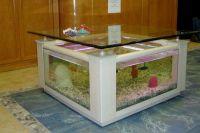 Akwarium stołowe 2