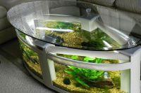 Akwarium stołowe 3