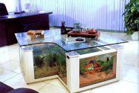 Akwarium stołowe 4