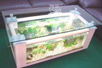 Akwarium stołowe 6