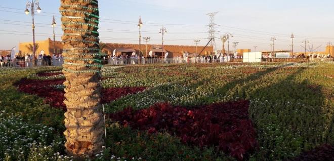 Цветочный город Табук