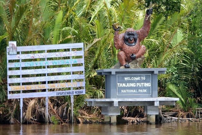 Добро пожаловать в Танжунгпутинг