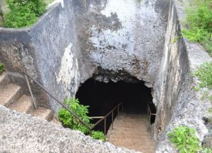 Пещеры Мангапвани