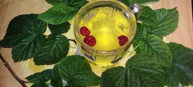 Чај од листова рибизле и малина