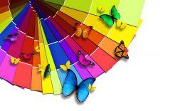 co znamenají barvy v psychologii