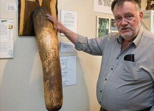 Некоторые экспонаты поражают своими размерами