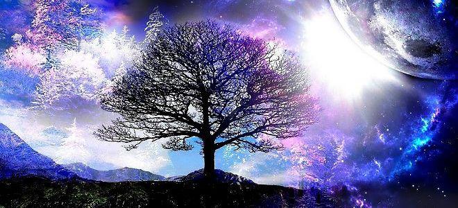 što znači stablo života