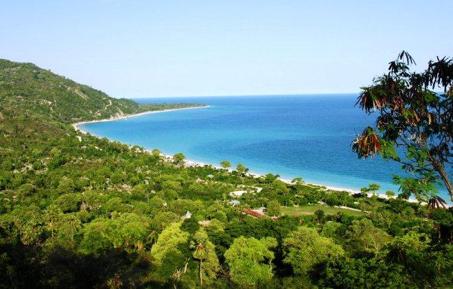 Природа на острове Тимор