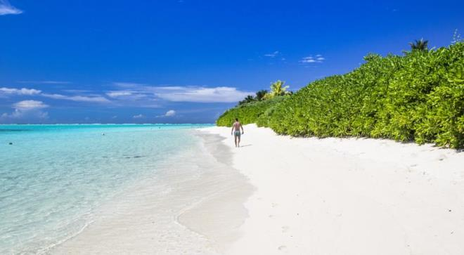 Бикини пляж Тодду
