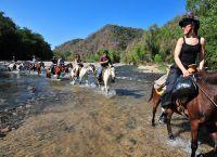 Прогулка на лошадях Торсхавн