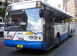 Автобусы австралии