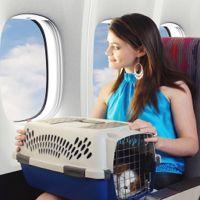 pravila prevoza živali v ravnini
