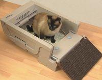 automatyczny podajnik dla kotów3