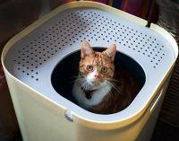 tace dla kotów ModCat3