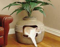 dom z tacami dla kotów3