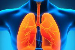 priljubljeni recepti za pljučnico pri odraslih