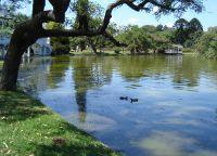 Искусственное озеро в парке Трес-де-Фебреро