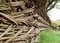 Vrste ograda1
