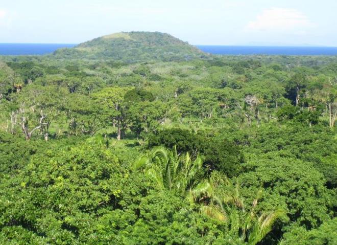 Высшая точка острова - Pumpkin Hill