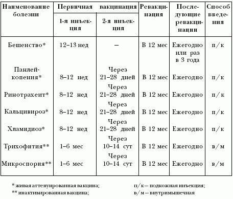 Вакцинације мачића - распоред2