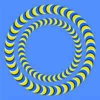 optične iluzije8