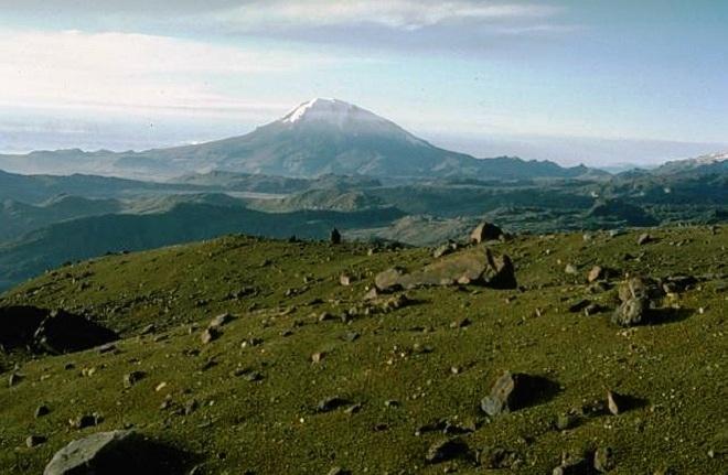 Невадо-дель-Толима