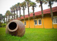 Музей в парке Педро-дель-Рио Zañartu