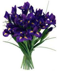 kwiaty dla mężczyzny na rocznicę
