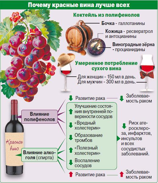 koje vino je korisnije bijelo ili crveno