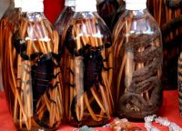 Настойки с заспиртованными змеями и скорпионами