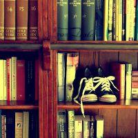 koje knjige podižem intelekt