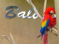 Što vidjeti u Baliu14