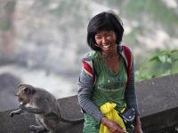 Što gledati na Bali24