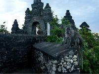 Što vidjeti u Baliu5