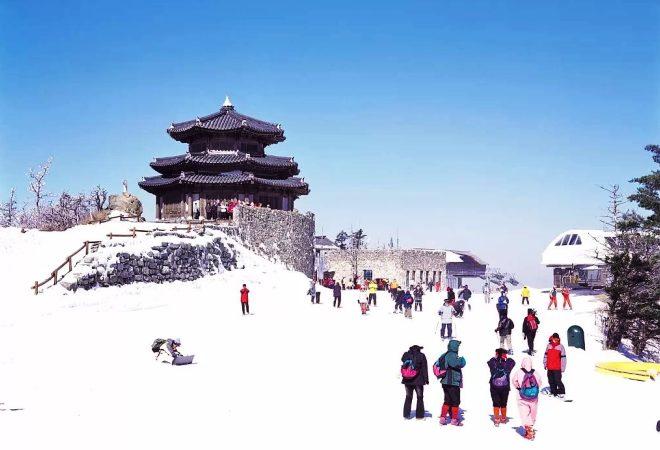 Зима в Южной Корее