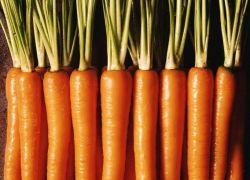 защо морковът става грозен