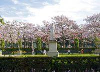 Парк скульптур в Вильце