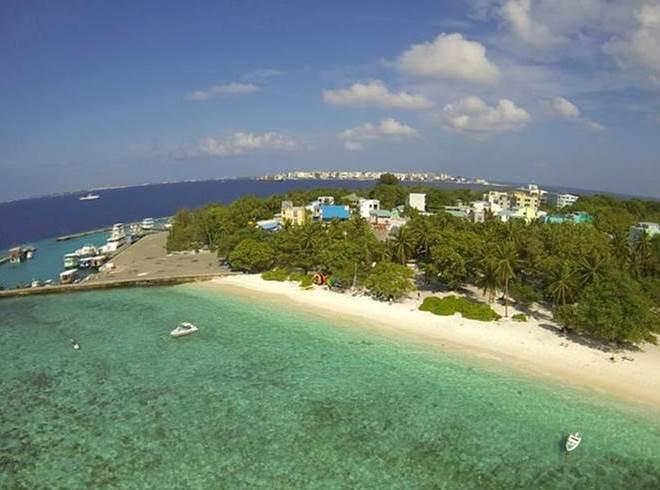 Природа острова