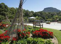 Ботанический сад в Вуллонгонге