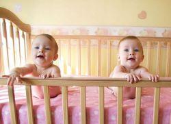 żółte ciało z bliźniakami