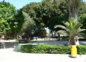 Аллеи в парке Дасуди
