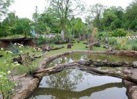 Тропический лес в зоопарке Цюриха