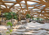 Зоопарк в Цюрихе